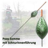 Sensas Pose DANUBE mit Schnurinnenführung  3-10 Gramm